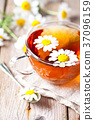 cup of tea with chamomile flowers 37096159