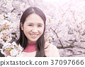 woman with Cherry blossoms 37097666