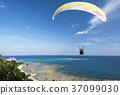滑翔机 天空体育 冲绳 37099030