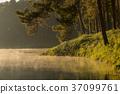 泰國 湖泊 湖 37099761