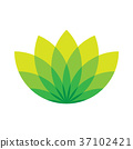Green lotus icon - wellness beauty and spa theme 37102421