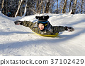 Little boy riding with hills on sleds 37102429