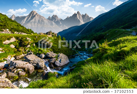 stream among the rocks in grassy valley 37102553