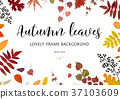 Vector card design Autumn leaves border, frame 37103609