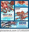 海鲜 鱼 食物 37105039