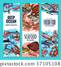 Vector banners of seafood fish products sketch 37105108