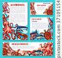 鱼 海 食物 37105154