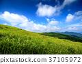 sky, blue, cloud 37105972