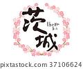 茨城刷字符櫻花框架 37106624