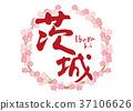 茨城刷字符樱花框架 37106626
