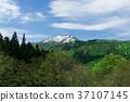 mountain, sky, trees 37107145