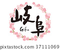 gifu, calligraphy writing, cherry blossom 37111069