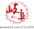 gifu, calligraphy writing, cherry blossom 37111070