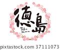 벚나무, 도쿠시마, 꽃 37111073