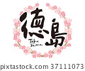 tokushima, calligraphy writing, cherry blossom 37111073