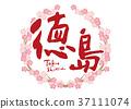 tokushima, calligraphy writing, cherry blossom 37111074