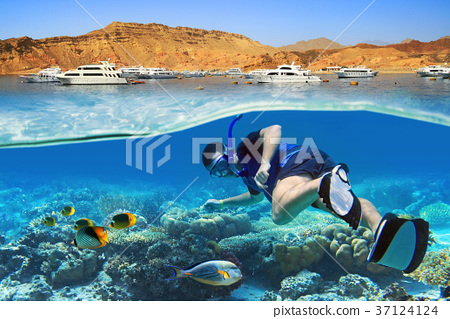 Man at snorkeling in the tropical water 37124124