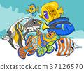 sea life tropical 37126570
