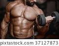 bodybuilder dumbbell lifting 37127873