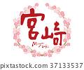 miyazaki, calligraphy writing, cherry blossom 37133537