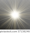 glare, sunshine, sunbeam 37136246