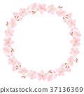 櫻花_吉野櫻花 37136369