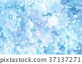 꽃, 플라워, 수국 37137271