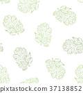 Coriander vector hand drawn  seamless pattern. 37138852