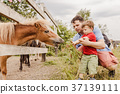 Toddler boy and his father feeding a pony at farm 37139111