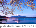 Mt. Fuji Spring 37139733