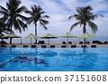 渡假村 度假 海邊 37151608