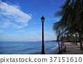 渡假村 度假 海邊 37151610