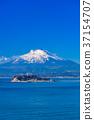 เอโนชิมะ,มหาสมุทร,ภูเขาฟูจิ 37154707