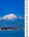 เอโนชิมะ,มหาสมุทร,ภูเขาฟูจิ 37154723