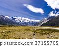 mountain, grass, field 37155705