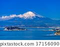 enoshima, landscape, scenery 37156090