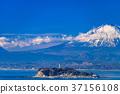 เอโนชิมะ,มหาสมุทร,ภูเขาฟูจิ 37156108
