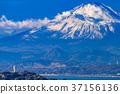 เอโนชิมะ,มหาสมุทร,ภูเขาฟูจิ 37156136