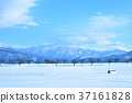 饭山冬天的景色2 37161828