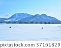 饭山冬季场景3 37161829