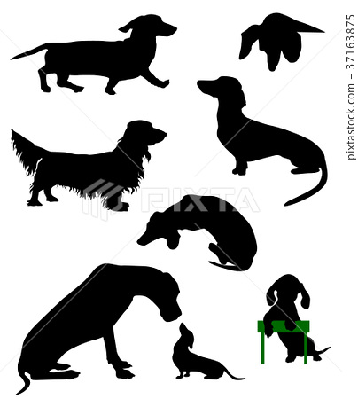 Silhouettes Of Dachshunds Vector Illustration