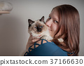 Young woman is hugging her Birman cat 37166630