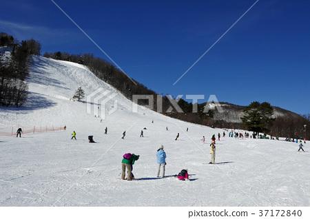 草津國際滑雪場的Tenguzan斜坡 37172840