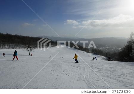 草津國際滑雪場 - 早上山 37172850