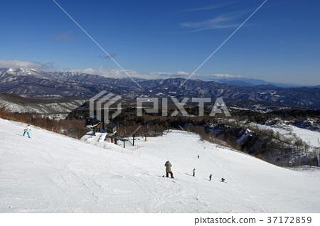 쿠사 츠 국제 스키장 - 青葉山 슬로프 (2) 37172859