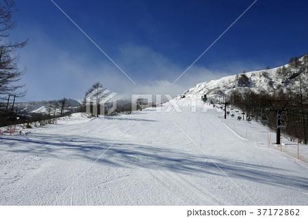 草津國際滑雪場 - 青山山坡(3) 37172862