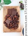 카카오 콩, 초코, 초콜릿 37177545