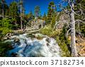 加州 加利福尼亞 美國 37182734