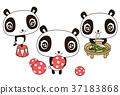 panda, pandas, animal 37183868