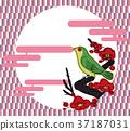 spring, ume, flower 37187031